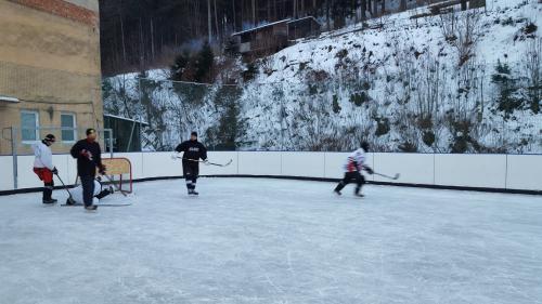 Hokejový turnaj 8.1.2017